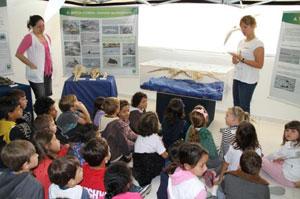 Exposição do Projeto Toninhas chega a Araquari