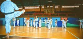 Araquari sedia 3ª etapa do Campeonato Estadual de Karatê
